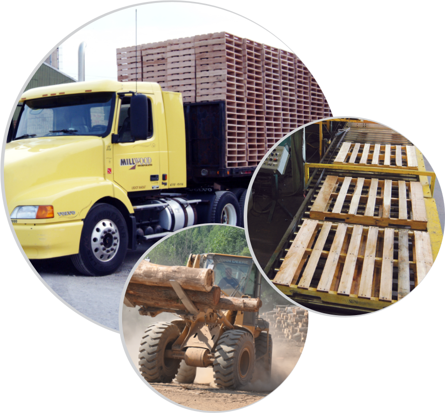pallets, new pallets, used pallets, recycled pallets